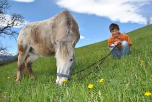 Pony-mit-Jakob-galtinerhof